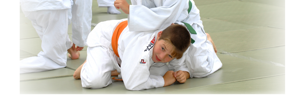 hintergrundbild_judo