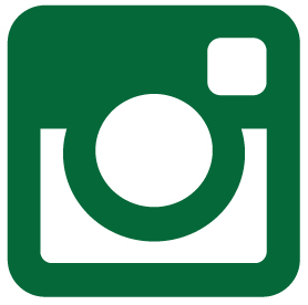 instagram_grün